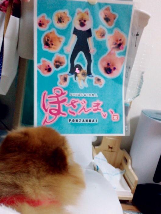 f:id:pon_ishikawa:20171031203956j:plain