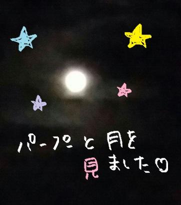 f:id:ponkotsu1215:20170213225620j:plain