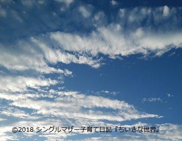f:id:ponkotsu1215:20180317224746j:plain