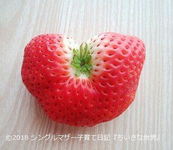 f:id:ponkotsu1215:20180401214537j:plain