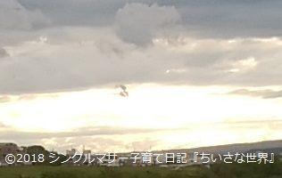 f:id:ponkotsu1215:20180425225347j:plain