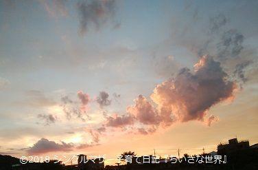 f:id:ponkotsu1215:20180725214611j:plain