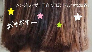 f:id:ponkotsu1215:20190526215920j:plain