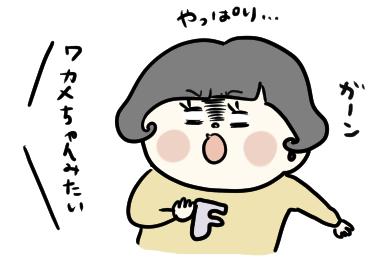f:id:ponkotsu1215:20191229153417p:plain