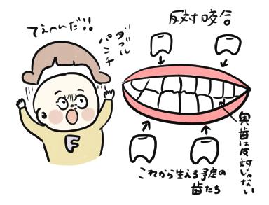 f:id:ponkotsu1215:20200604214133p:plain