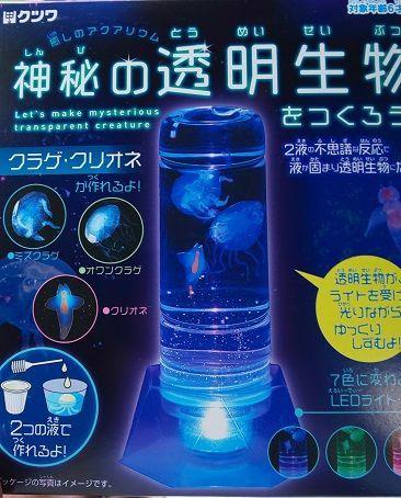 f:id:ponkotsu1215:20210621205458j:plain