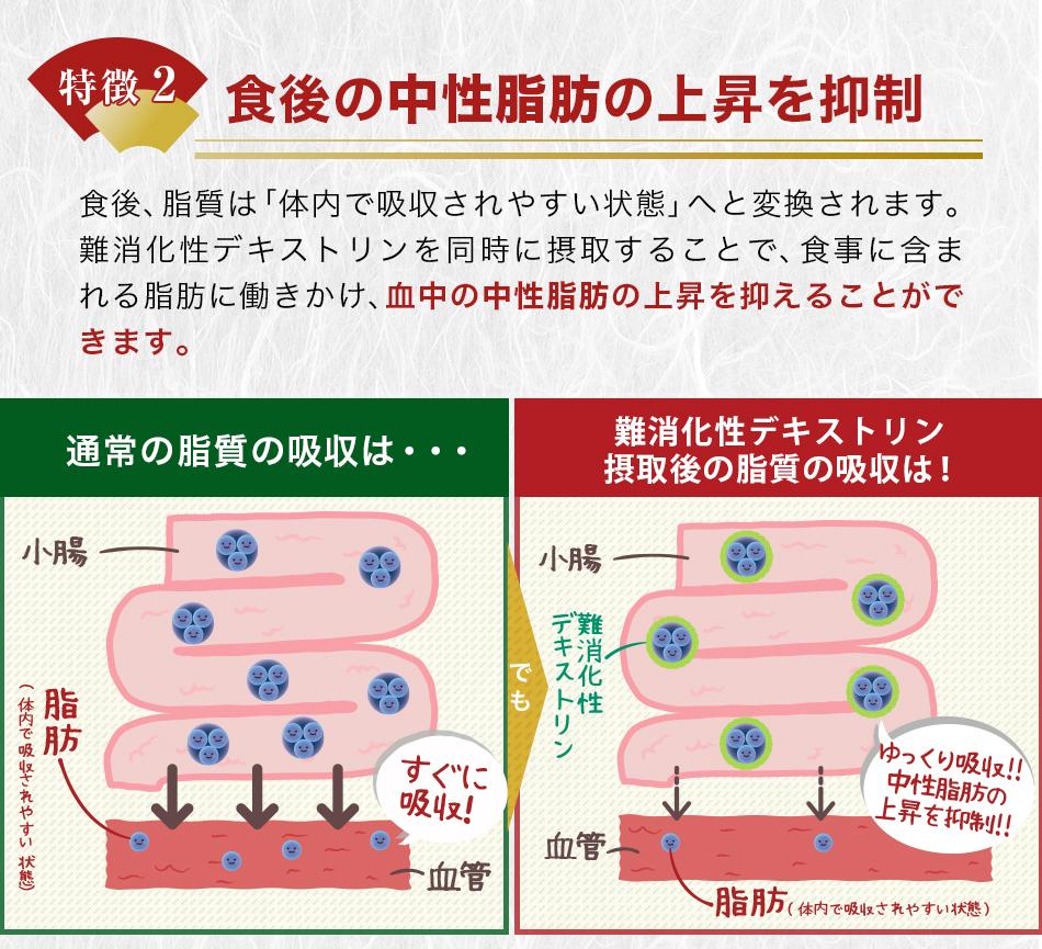 脂肪の抑制