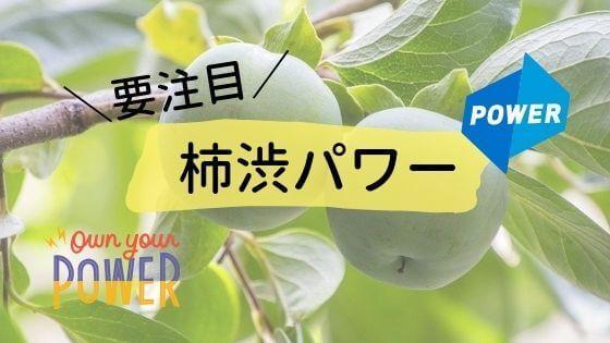 要注目柿渋パワー