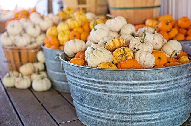 かぼちゃとにんにく