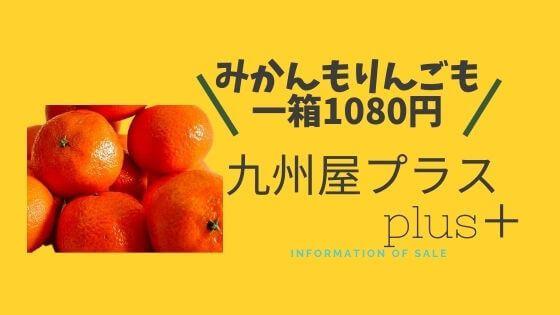 九州屋プラスplus+について