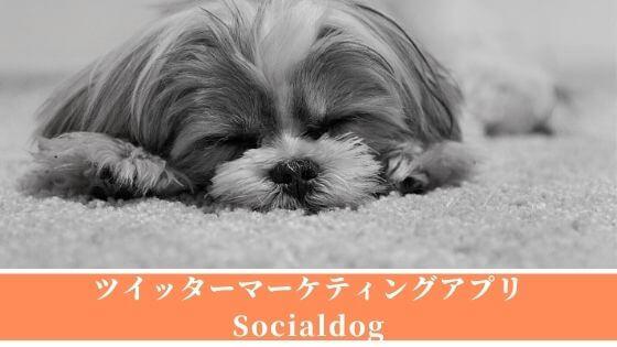 【Socialdog】ツイッターマーケティングツールで予約投稿,フォロー管理ができます
