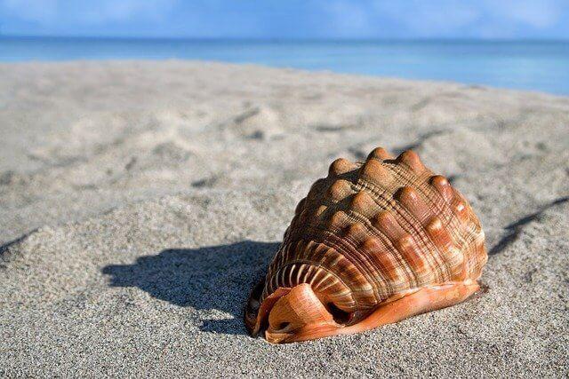 心が疲れたとき試した方法④山川海など自然にふれる