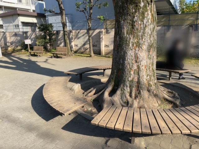 新宿区矢来公園 座るところ