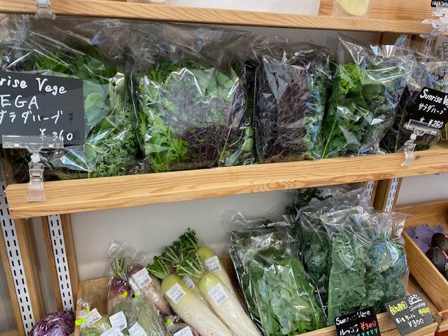 神楽坂野菜計画 自社農園の野菜