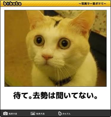 f:id:ponponking:20170131145314j:plain