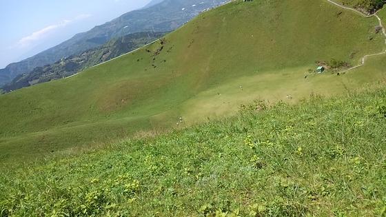 f:id:ponsuke_tarou:20180224162501j:plain