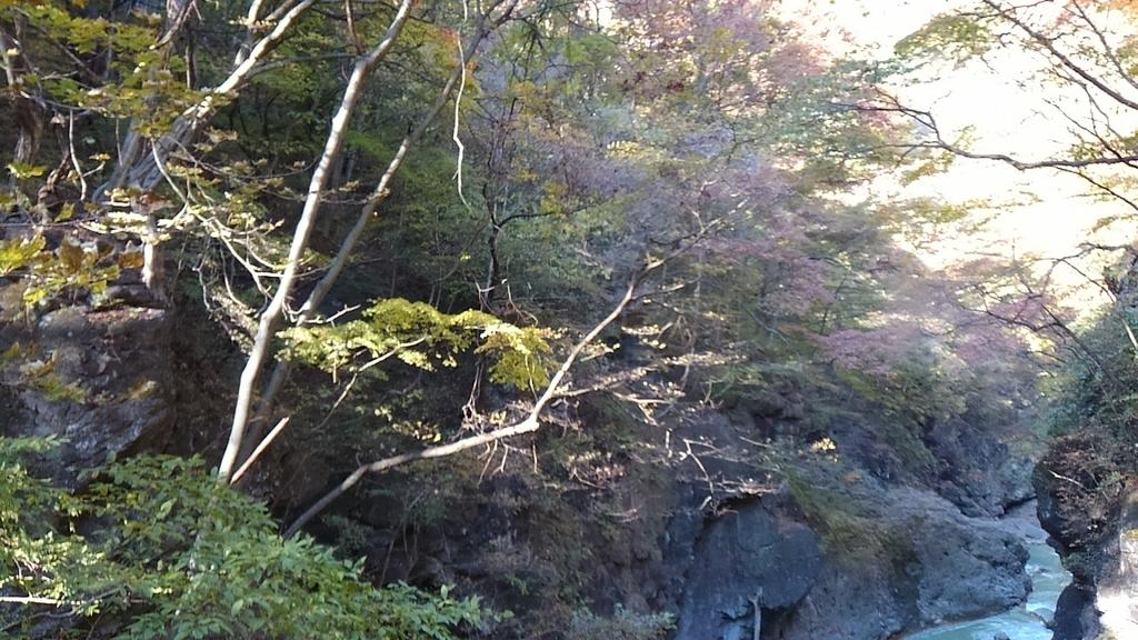 f:id:ponsuke_tarou:20181205000802j:plain