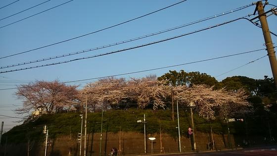 f:id:ponsuke_tarou:20190315214631p:plain
