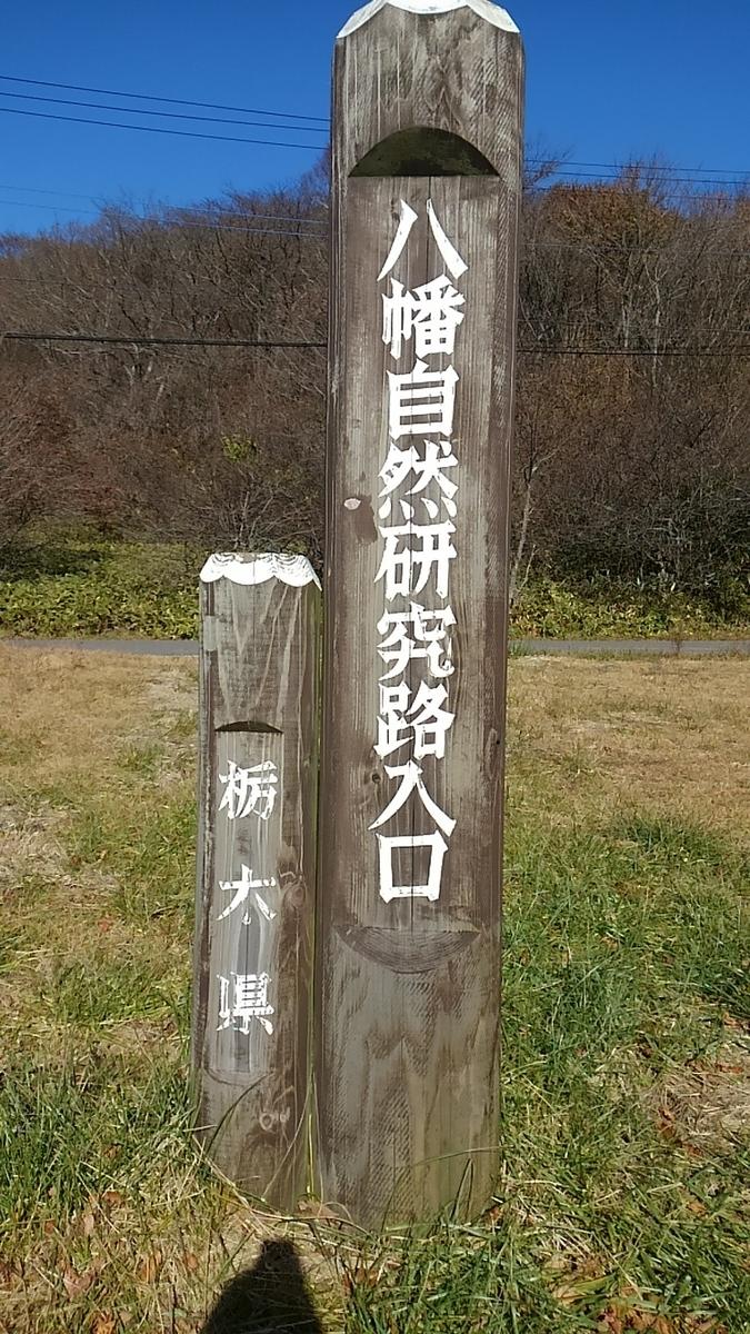 f:id:ponsuke_tarou:20190603204533j:plain