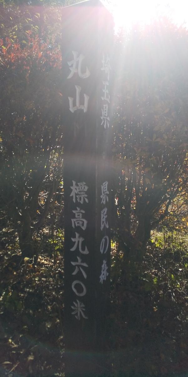 f:id:ponsuke_tarou:20201102075231j:plain