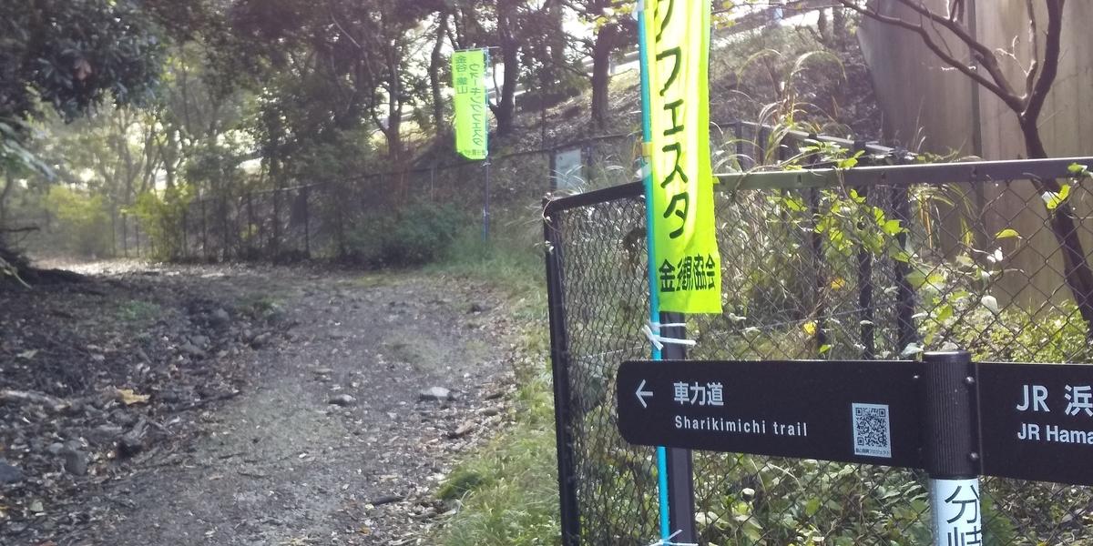 f:id:ponsuke_tarou:20201103215111j:plain