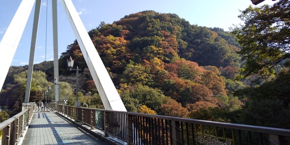 f:id:ponsuke_tarou:20201108173923j:plain