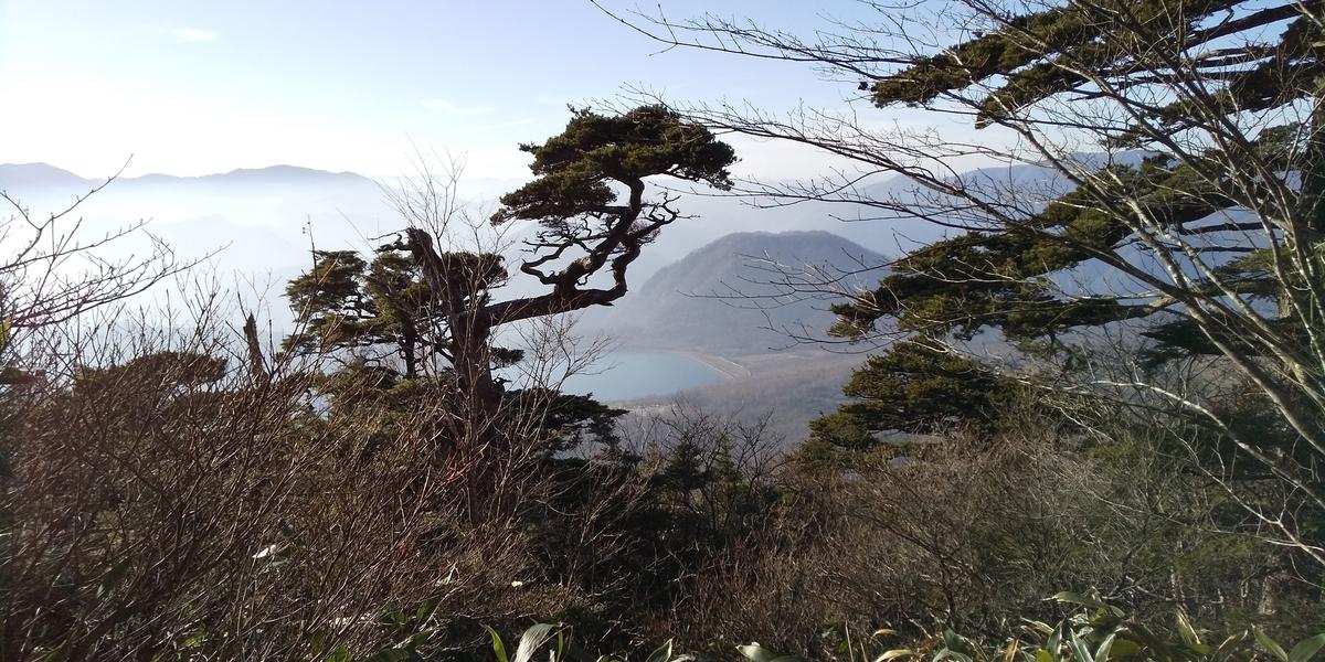 f:id:ponsuke_tarou:20201124193648j:plain