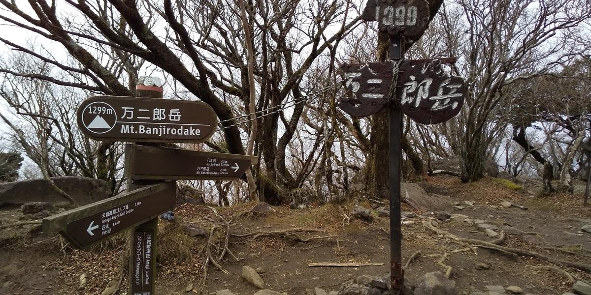 f:id:ponsuke_tarou:20201124202247j:plain