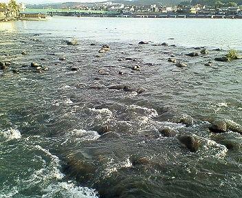 三隈川の流れ