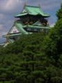 緑に包まれた大阪城天守