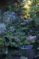 六義園 水分石