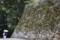 彦根城鐘の丸下石垣