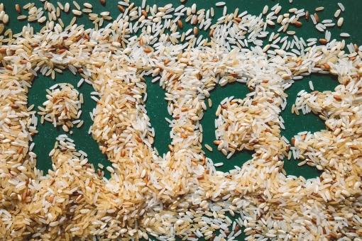 お米の保存 桐