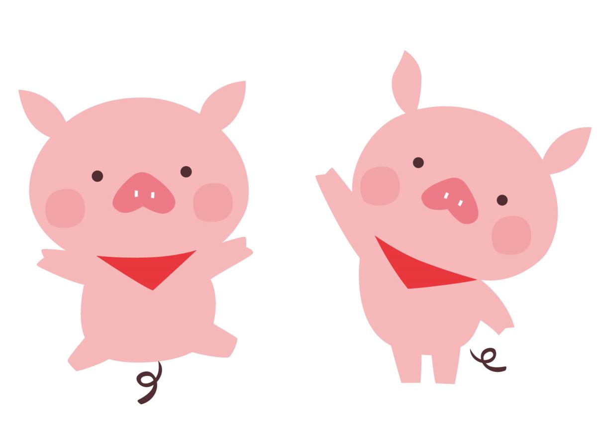 焼き豚を作ってみた。豚バラ肉と豚肩ロース。どっちが美味しい?
