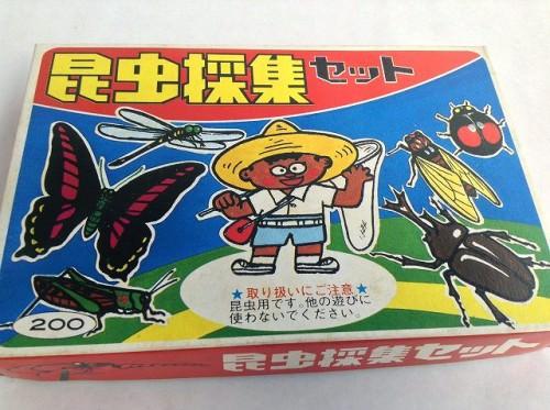 夏休みの自由研究 昆虫採集