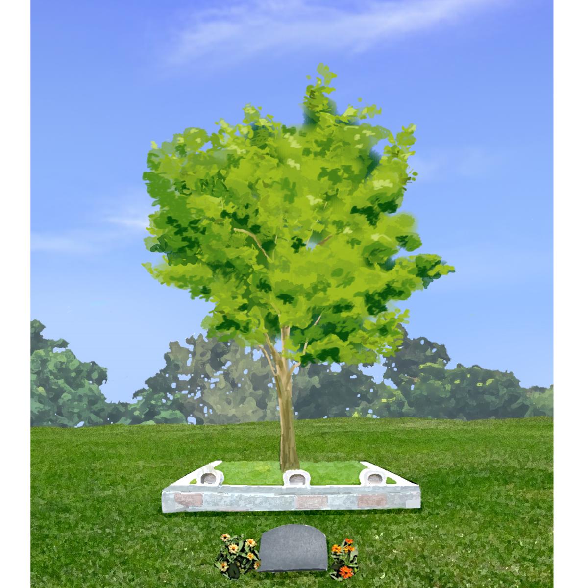 火葬でも土葬でもない。遺体を堆肥化する埋葬方法が考えられているらしい。