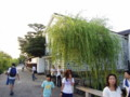[20070815][岡山]P8150022.JPG