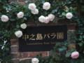 [大阪][キタ][中之島]P5240026.JPG