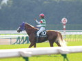 [20091115][競馬][京都競馬場][京都競馬場20091115][2009エリザベス女王杯]PB150576.JPG