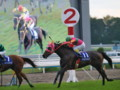 [20091115][競馬][京都競馬場][京都競馬場20091115][2009エリザベス女王杯]PB151024.JPG