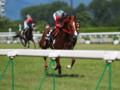 [20110710][競馬][京都競馬場][京都競馬場20110710]P7100979.JPG