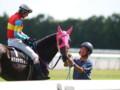 [20110710][競馬][京都競馬場][京都競馬場20110710]P7101132.JPG