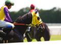 [20110710][競馬][京都競馬場][京都競馬場20110710]P7101180.JPG