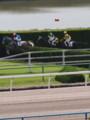 [20110723][競馬][京都競馬場][京都競馬場20110723]P7230008.JPG