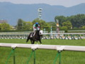 [20130526][競馬][京都競馬場][京都競馬場20130526]P5260435.JPG