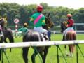 [20130526][競馬][京都競馬場][京都競馬場20130526]P5260627.JPG