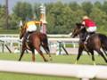 [20130526][競馬][京都競馬場][京都競馬場20130526]P5261035.JPG