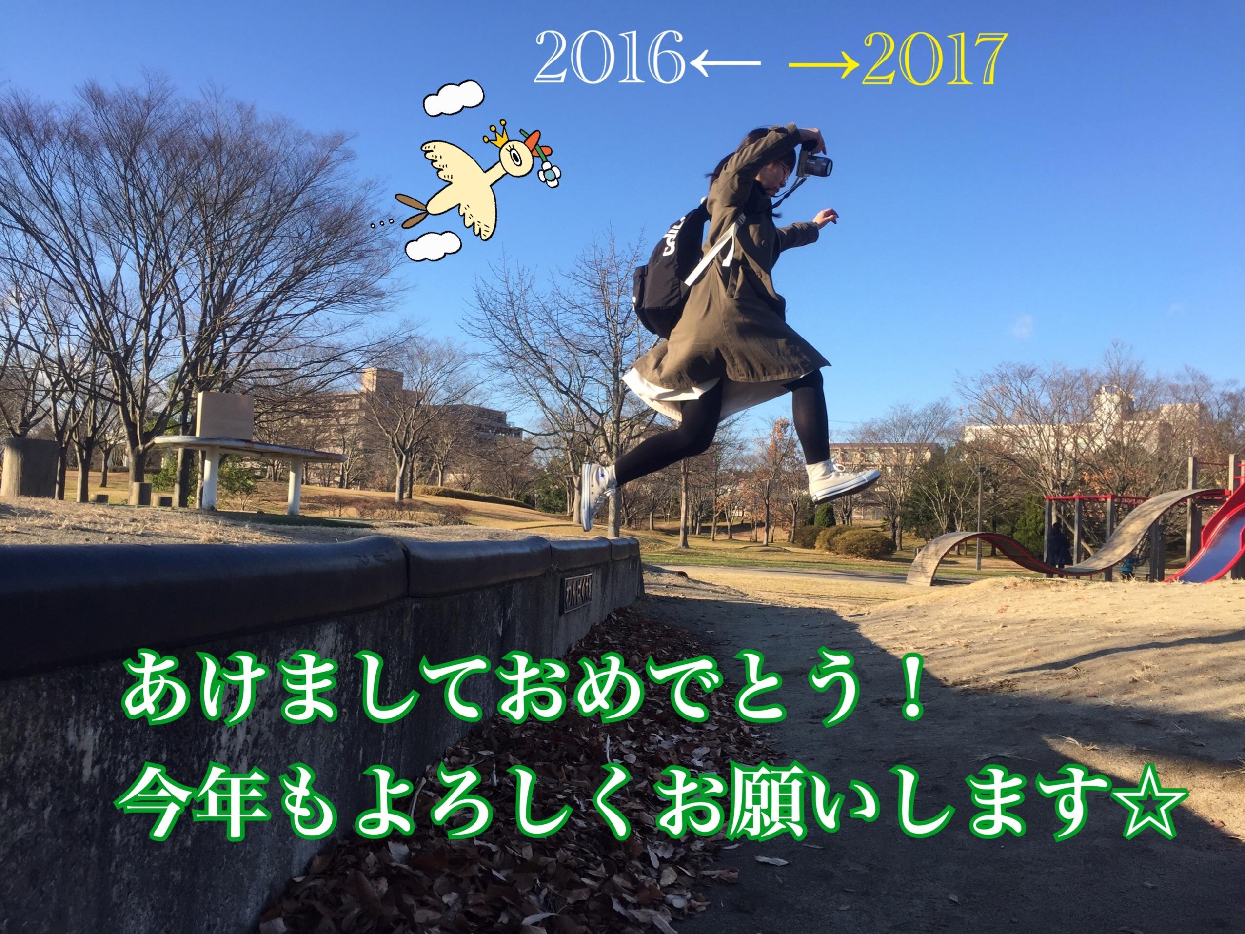 f:id:popou:20161208210157j:image