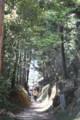 玄賓庵から桧原神社へ向かう山道