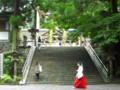 拝殿前・三つの茅の輪(石段の上)【大神神社】